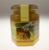Frühtracht Obstblüten Bienenhonig 250g Glas